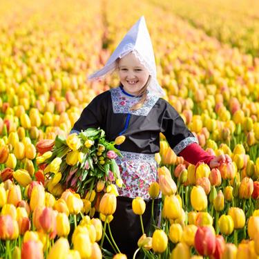 L'arcobaleno dei tulipani del Keukenhof